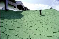 תמונה 2  גג דגם - יריעת שינגלס