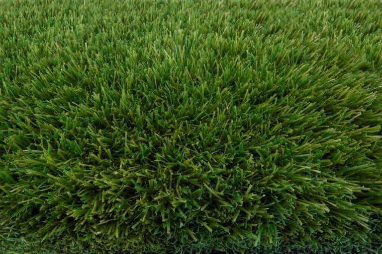 תמונה 2  דשא סינטטי - פשוט ירוק - Topa