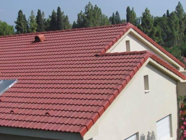 תמונה 2  גג דגם - רעף טוננגה