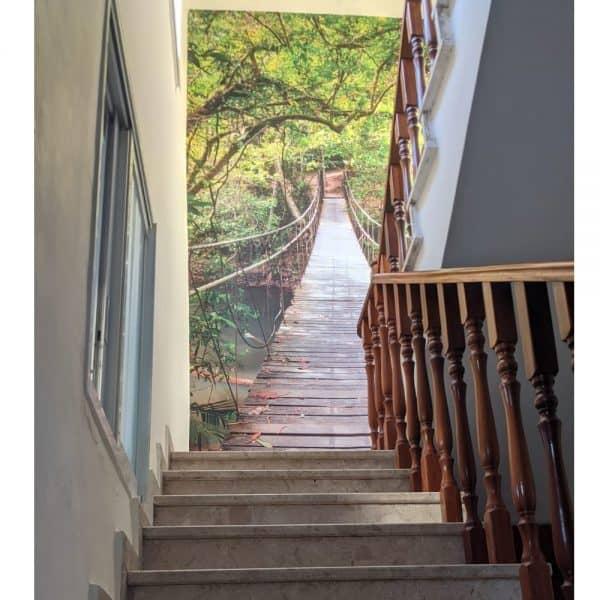 גשר עצים - מדרגות
