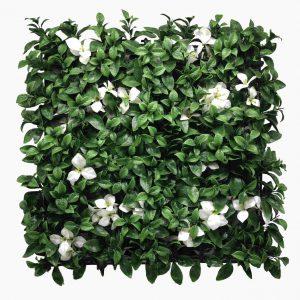 קיר צמחיה מלאכותי - HOLLY הולי - גרדניה לבן