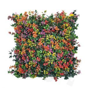 קיר צמחיה מלאכותי - HOLLY הולי - פצ'יסנדרה צבעונית
